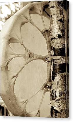 Native Drum Canvas Print by Nick Mares