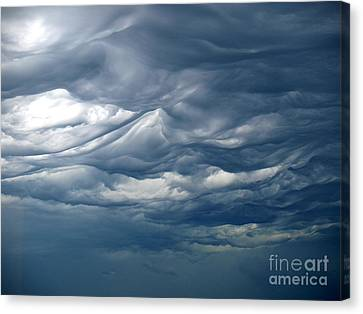 Natural Beauty 2 Canvas Print by Susan  Dimitrakopoulos