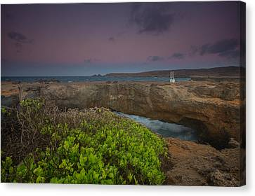 Natural Bridge Aruba Canvas Print by Eti Reid