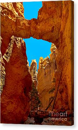 Natural Bridge Bryce Canvas Print by Robert Bales