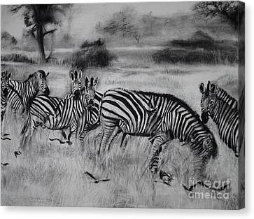 Natural Habitat  Canvas Print by Laneea Tolley
