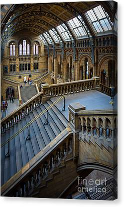 Natural History Museum Canvas Print by Inge Johnsson