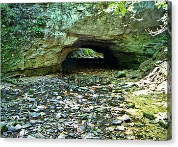Green Lichen Canvas Print - Natural Rock Bridge by Cricket Hackmann