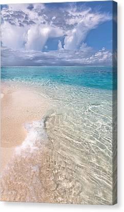 Natural Wonder. Maldives Canvas Print