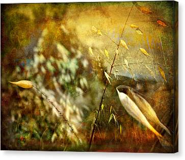 Canvas Print featuring the photograph Nature #13. Calling You by Alfredo Gonzalez
