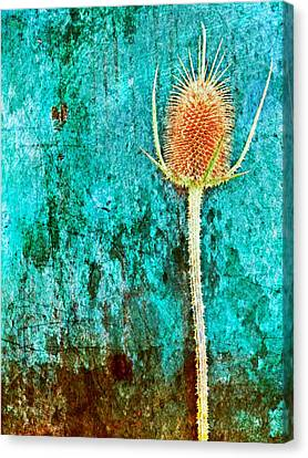Canvas Print featuring the digital art Nature Abstract 13 by Maria Huntley