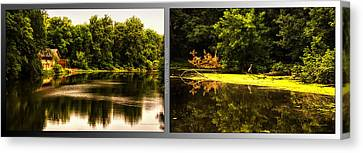 Nature Center 01 Looking For Breakfast Fullersburg Woods 2 Panel Canvas Print by Thomas Woolworth