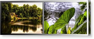 Nature Center 01 Water Leaf Fullersburg Woods 2 Panel Canvas Print by Thomas Woolworth