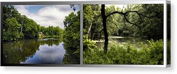 Nature Center 02 Tree Silhouette Fullersburg Woods 2 Panel Canvas Print by Thomas Woolworth