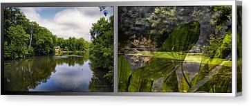 Nature Center 02 Water Plant Bird Merge Fullersburg Woods 2 Panel Canvas Print by Thomas Woolworth