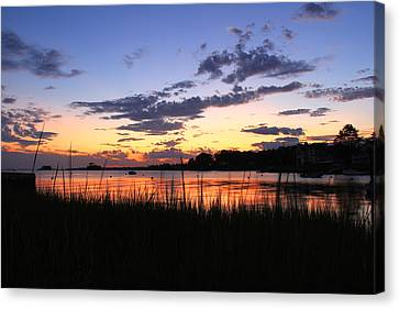 Nature In Connecticut Canvas Print by Mark Ashkenazi
