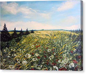 Nature Landscape Field Poppies Daises Grass Pines Original Art  Canvas Print by Drinka Mercep