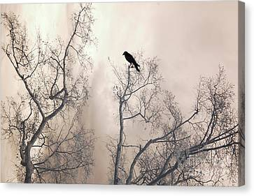 Nature Raven Crow Trees - Surreal Fantasy Gothic Nature Raven Crow In Trees Sepia Print Decor Canvas Print by Kathy Fornal