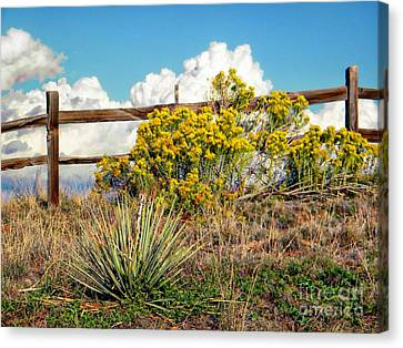 Fountain Creek Nature Center Canvas Print - Nature by Michelle Frizzell-Thompson