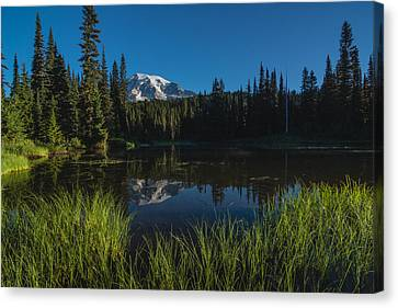Nature Mirror Canvas Print by Gene Garnace