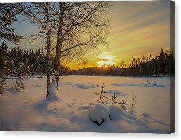 Nature Of Norway Canvas Print