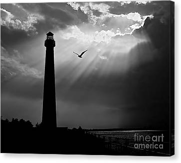 Nature Shines Brighter In Black And White Canvas Print by Mark Miller