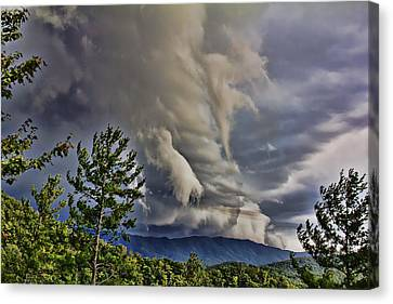 Nature Showing Off Canvas Print by Tom Culver