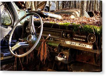 Nature Takes Over A Cadillac Canvas Print