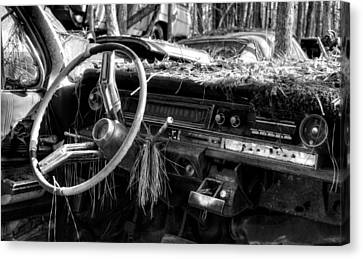 Nature Takes Over A Cadillac In Black And White Canvas Print