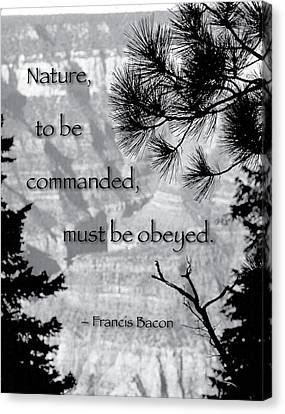 Nature To Be Commanded Canvas Print by Mike Flynn