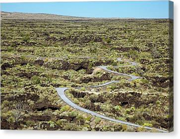 Nature Trail And Lava Flow Canvas Print