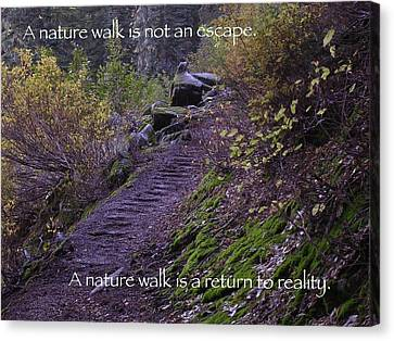 Nature Walk Canvas Print by Tom Trimbath
