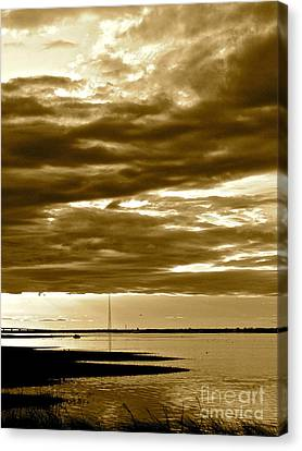 Nature Witnesses Canvas Print by Q's House of Art ArtandFinePhotography