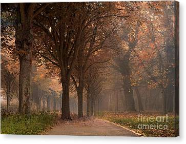 Nature Woodlands Autumn Fall Landscape Trees Canvas Print by Kathy Fornal