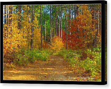 Canvas Print featuring the photograph Natures Beauty by Michaela Preston