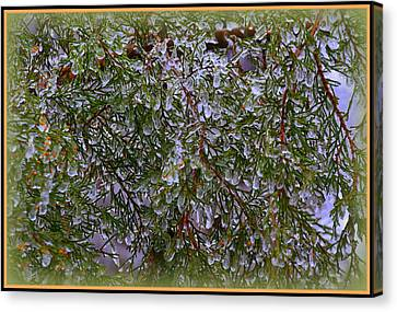Ice Canvas Print - Natures Crystals by Lisa Wooten