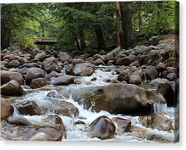 Canvas Print featuring the photograph Nature's Flow  by Christy Pooschke