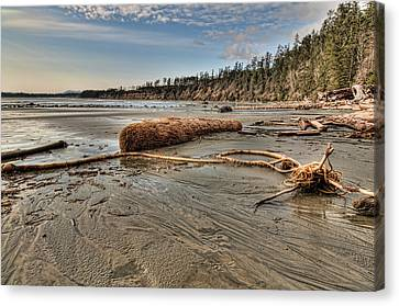 Natures Garbage Canvas Print by James Wheeler