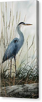 Great Blue Heron Canvas Print - Natures Gentle Stillness by James Williamson