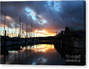 Nature's Glory Canvas Print by Alison Tomich