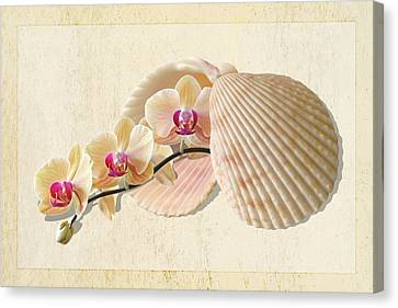 Golden Pink Orchid Canvas Print - Nature's Golden Gems by Gill Billington