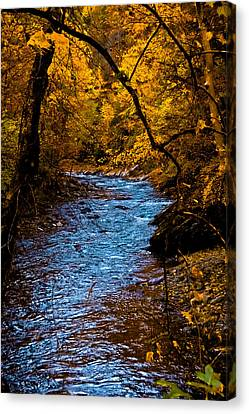 Digiart Canvas Print - Natures Golden Secret by DigiArt Diaries by Vicky B Fuller