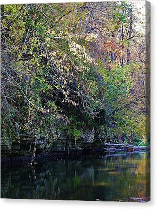 Natures Inspiration Canvas Print by Bruce Bley