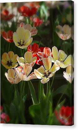 Canvas Print featuring the photograph Natures Joy by Randy Pollard
