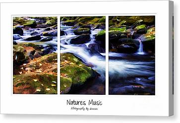 Natures Music Canvas Print by Darren Fisher