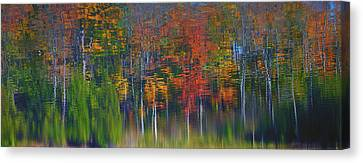 Nature's Paint Brush Canvas Print by Gary Hall