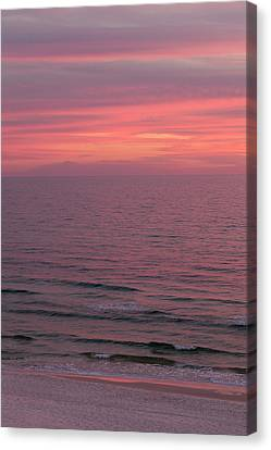 Nature's Paint Canvas Print by Dru Stefan Stone