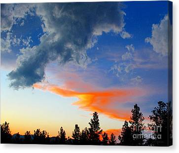 Nature's Palette Canvas Print by Barbara Chichester