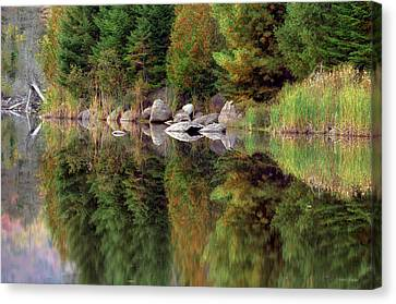 Natures Reflection Canvas Print by Mark Papke