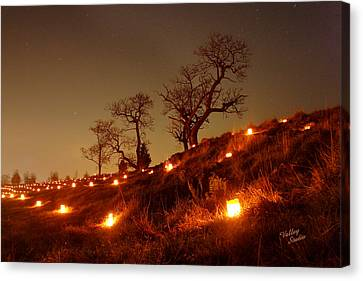 Canvas Print featuring the photograph Nature's Sentinels 12 by Judi Quelland