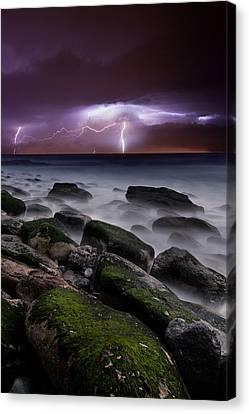 Nature's Splendor Canvas Print by Jorge Maia