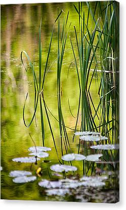 Reflections Of Nature Canvas Print - Natures Stillness by Karol Livote