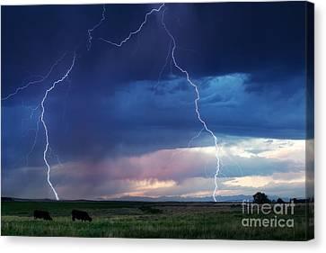 Nature's Thunder Canvas Print by Cindy Singleton