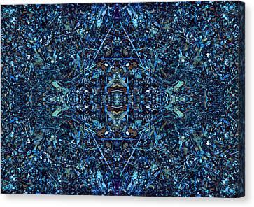 Magic Of Intricacy Canvas Print