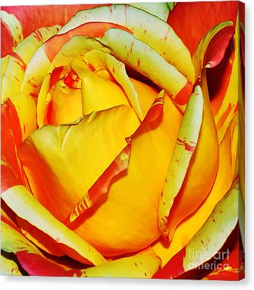Nature's Vivid Colors Canvas Print by Kaye Menner